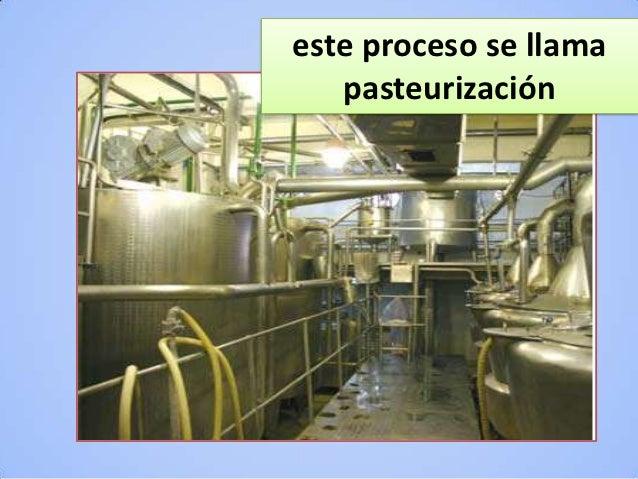 Circuito Productivo De La Leche : Circuito prod de la leche