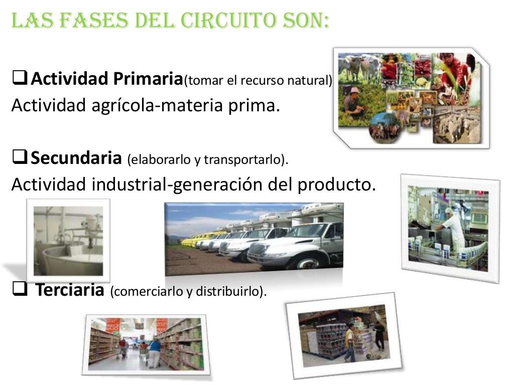 Circuito Productivo : Caña de azucar circuito productivo youtube