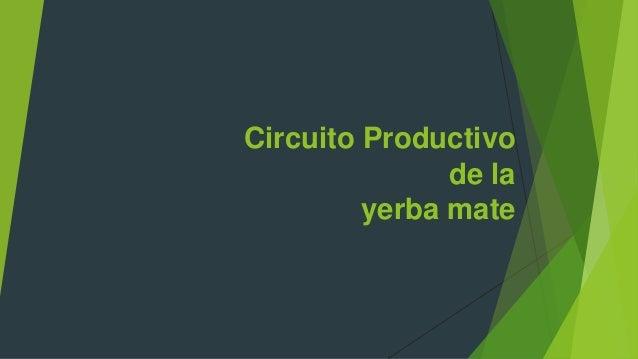 Circuito Productivo De La Yerba Mate : Circuito productivo