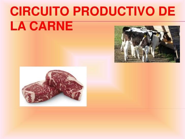 CIRCUITO PRODUCTIVO DELA CARNE