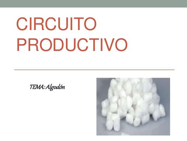 Circuito Productivo Del Algodon : Circuito productivo del algodón presentación