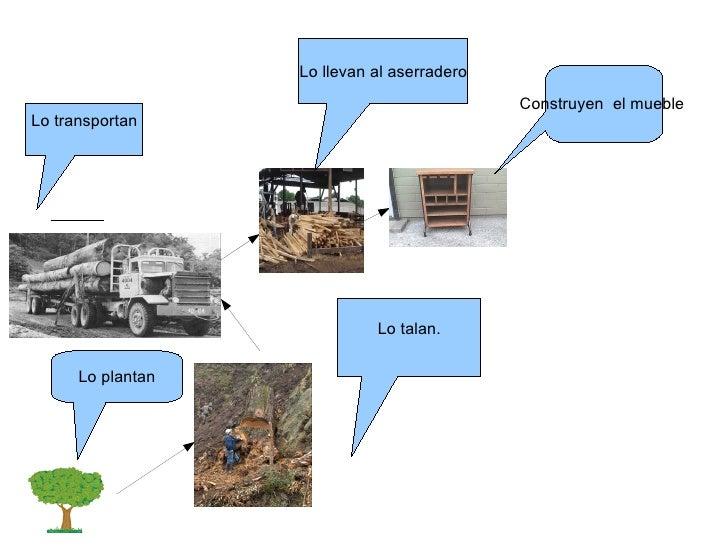 Circuito Productivo Del Tomate : Circuito productivo de la madera