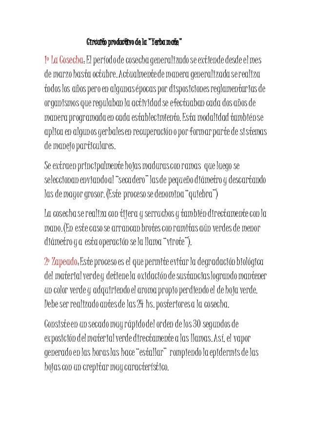 """Circuito productivo de la """"Yerba mate""""  1º La Cosecha: El período de cosecha generalizado se extiende desde el mes  de mar..."""