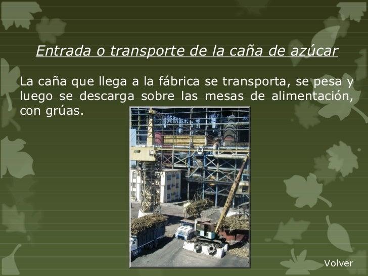 Circuito Productivo De La Caña De Azucar : Circuito productivo del azucar
