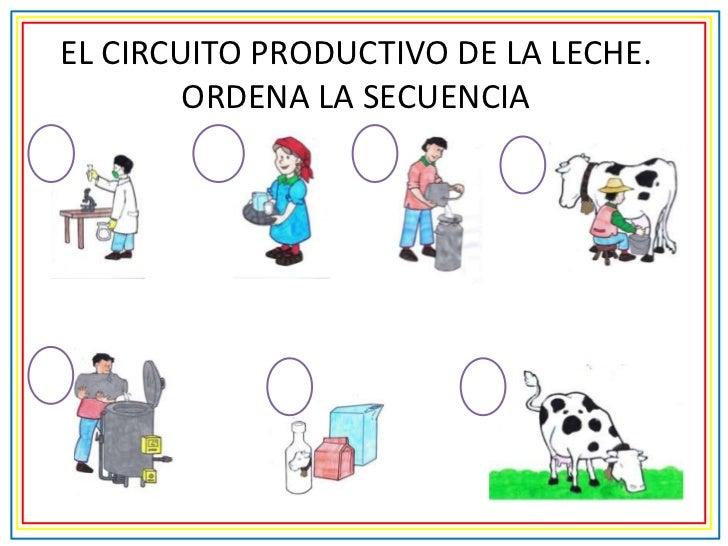 Circuito Productivo De La Leche : Circuito productivo para primer grado