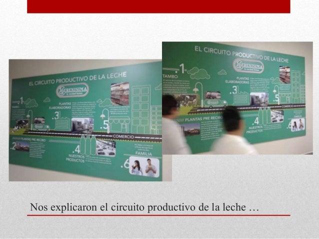 Circuito Productivo De La Leche : Circuitos productivos ºa
