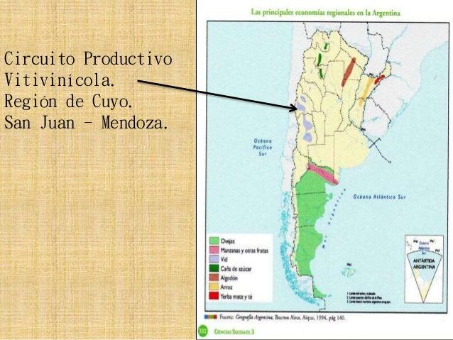 Circuito Productivo : Circuito productivo vitivinícola