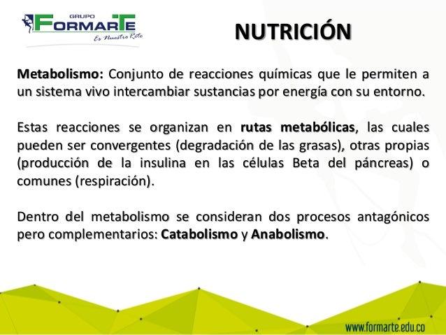 Circulaci n respiraci n reproducci n - Alimentos para la circulacion ...