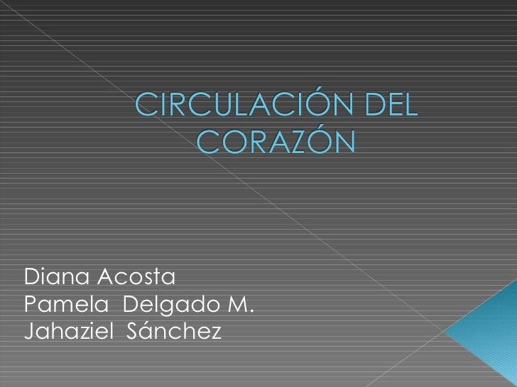 Diana Acosta Pamela  Delgado M. Jahaziel  Sánchez