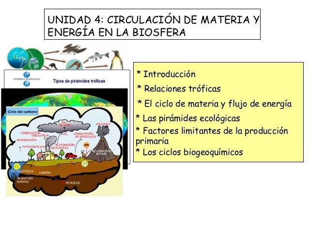UNIDAD 4: CIRCULACIÓN DE MATERIA YENERGÍA EN LA BIOSFERA              * Introducción              * Relaciones tróficas   ...