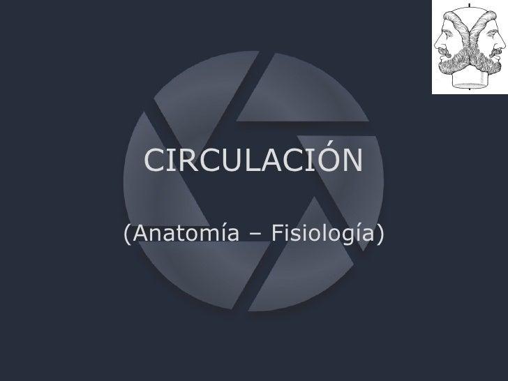 CIRCULACIÓN (Anatomía – Fisiología)