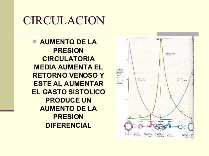Circulacion general - Medias para la circulacion ...