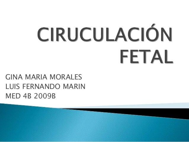 CIRUCULACIÓN FETAL<br />GINA MARIA MORALES<br />LUIS FERNANDO MARIN<br />MED 4B 2009B<br />