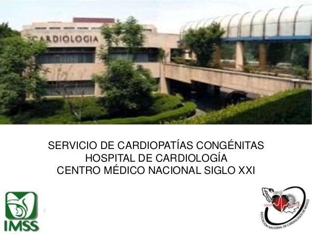 Circulaci n fetal - Centro deportivo siglo xxi zaragoza ...