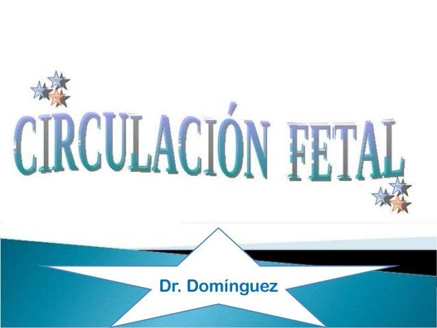 Dr. Domínguez