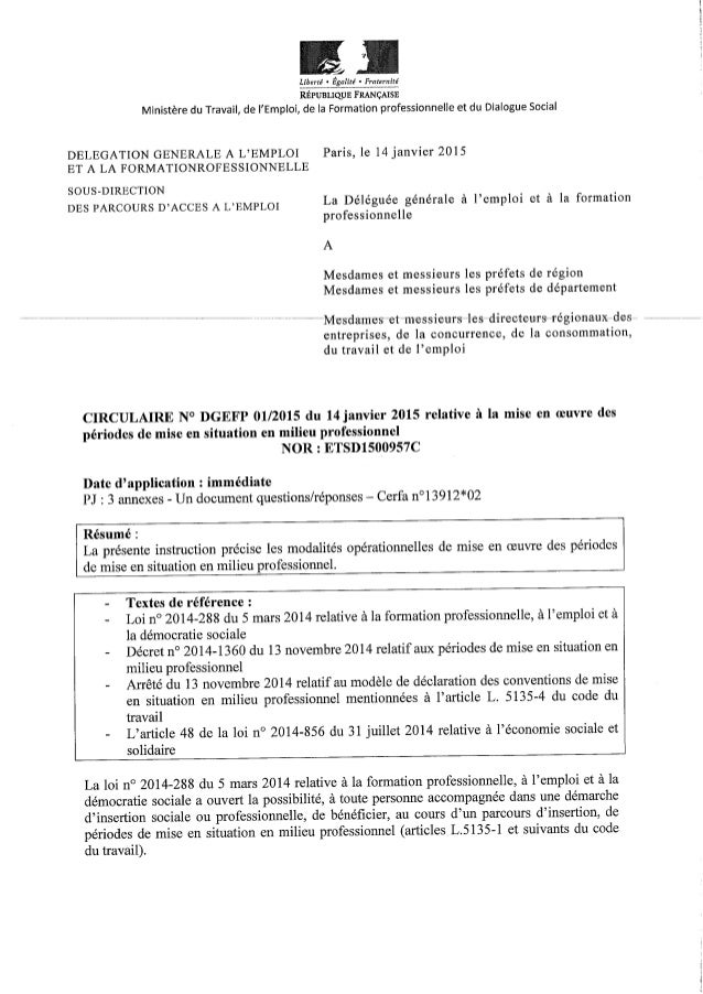 Circulaire DGEFP 14-janvier-2015-pmsmp-periode-mise-situation-professionnelle