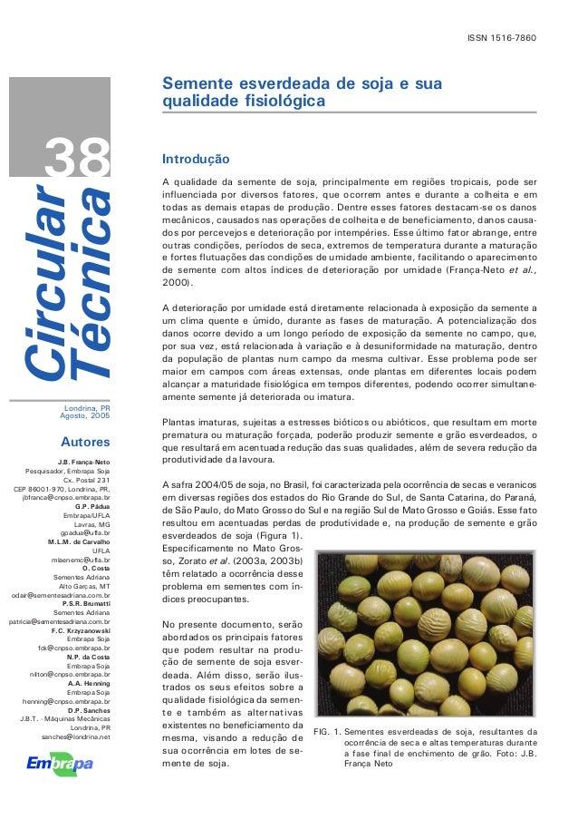 ISSN 1516-7860                                    Semente esverdeada de soja e sua                                    qual...