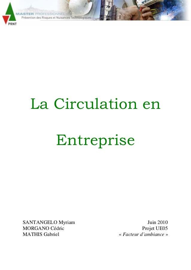 1 La Circulation en Entreprise SANTANGELO Myriam Juin 2010 MORGANO Cédric Projet UE05 MATHIS Gabriel « Facteur d'ambiance »