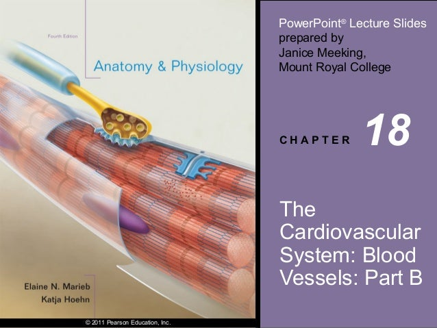 PowerPoint® Lecture Slides prepared by Janice Meeking, Mount Royal College  CHAPTER  18  The Cardiovascular System: Blood ...