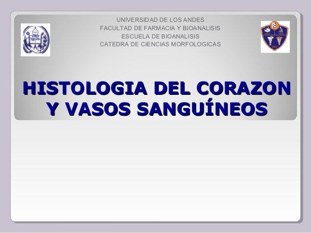 HISTOLOGIA DEL CORAZONHISTOLOGIA DEL CORAZON Y VASOS SANGUÍNEOSY VASOS SANGUÍNEOS UNIVERSIDAD DE LOS ANDES FACULTAD DE FAR...
