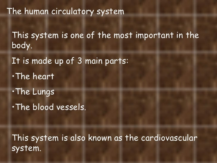 The human circulatory system <ul><li>This system is one of the most important in the body.  </li></ul><ul><li>It is made u...