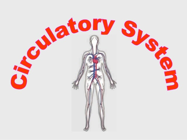  The circulatory system carries blood and dissolved substances to and from different places in the body.  The Heart has ...