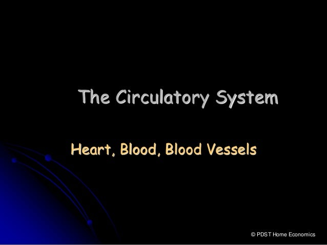 Circulatory system for Home circulation system