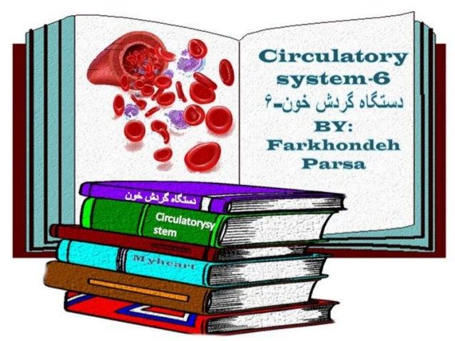 Circulatory system 6