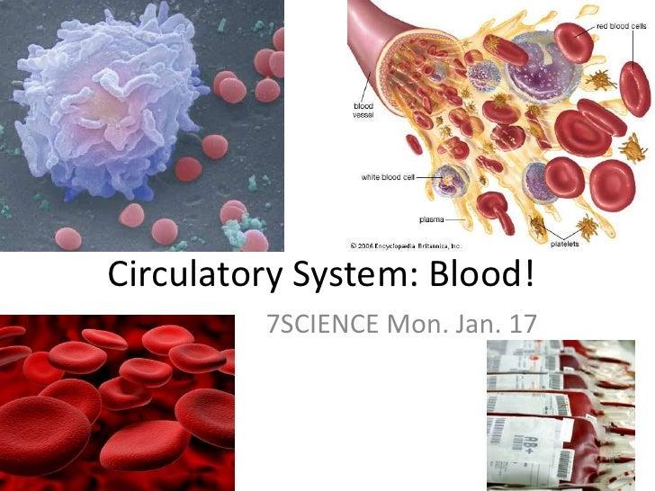 Circulatory System: Blood!<br />7SCIENCE Mon. Jan. 17<br />