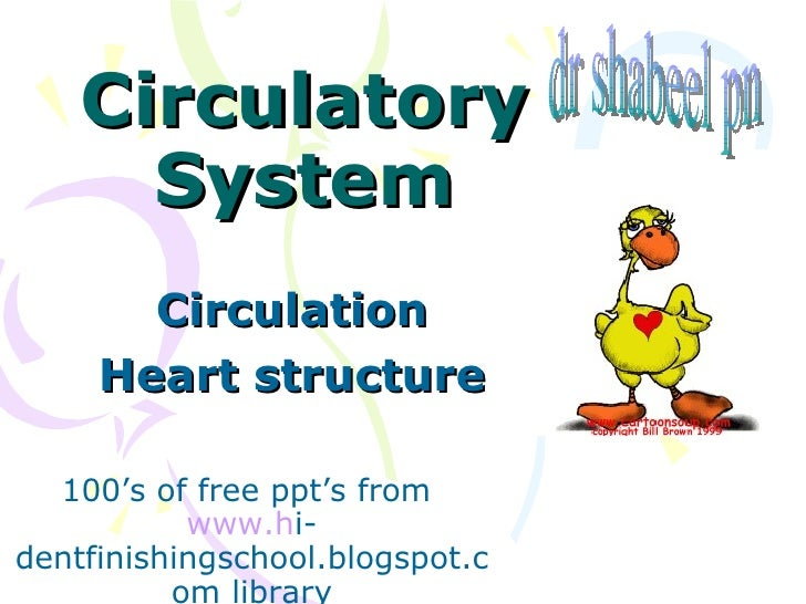 Circulatory System Circulation Heart structure 100's of free ppt's from  www.h i-dentfinishingschool.blogspot.com library ...