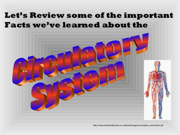 Circulatory system slide show your body pg12 18 ccuart Choice Image