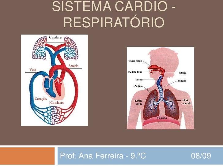 SISTEMA CARDIO -   RESPIRATÓRIO      Prof. Ana Ferreira - 9.ºC   08/09