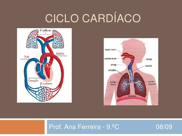 CICLO CARDÍACO     Prof. Ana Ferreira - 9.ºC   08/09