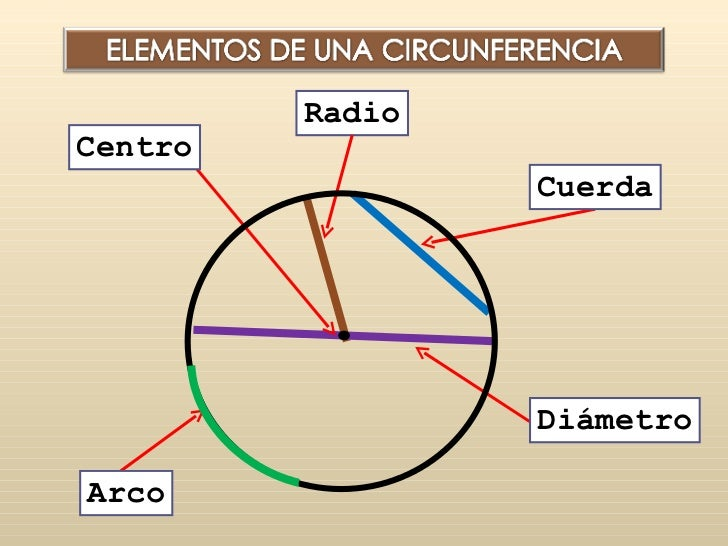 Elementos de la circunferencia yahoo dating 10
