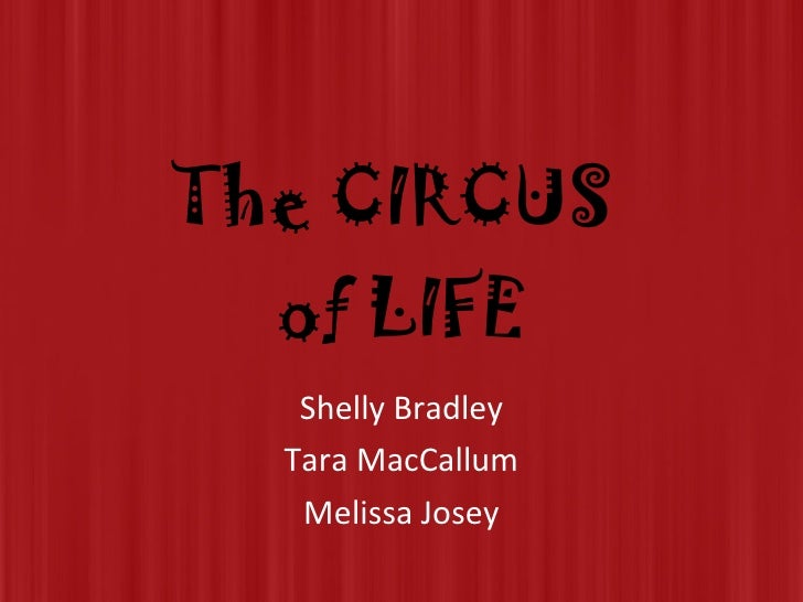 The CIRCUS  of LIFE Shelly Bradley Tara MacCallum Melissa Josey