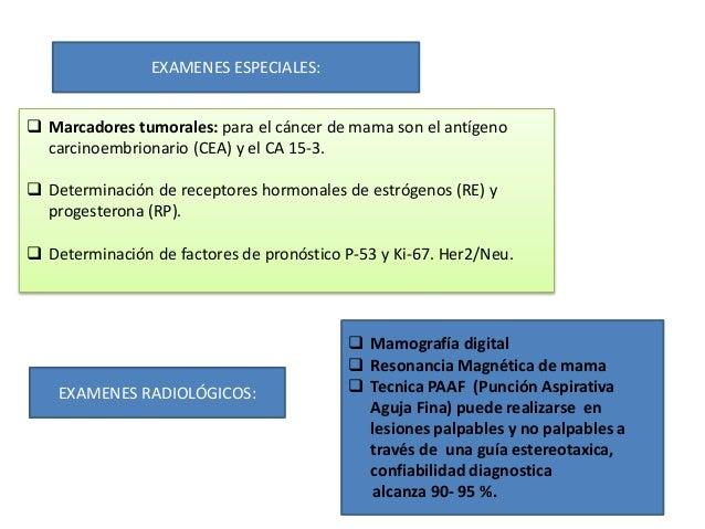 EXAMENES ESPECIALES:  Marcadores tumorales: para el cáncer de mama son el antígeno carcinoembrionario (CEA) y el CA 15-3....