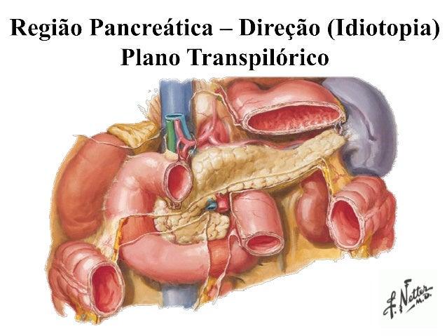 Anatomia Ductal Tumoração Inflamatória