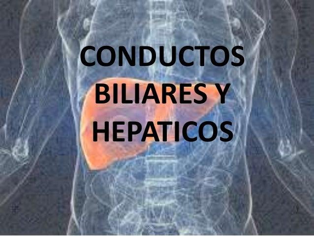 CONDUCTOS BILIARES Y HEPATICOS