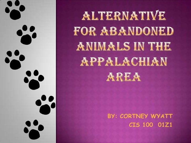 ALTERNATIVE FOR ABANDONED ANIMALS IN THE APPALACHIAN AREA<br />BY: CORTNEY WYATT<br />CIS 100  01Z1<br />