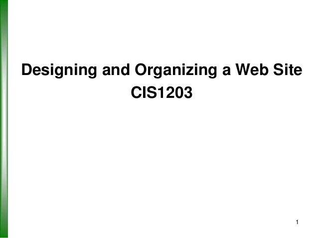 Designing and Organizing a Web Site CIS1203  1