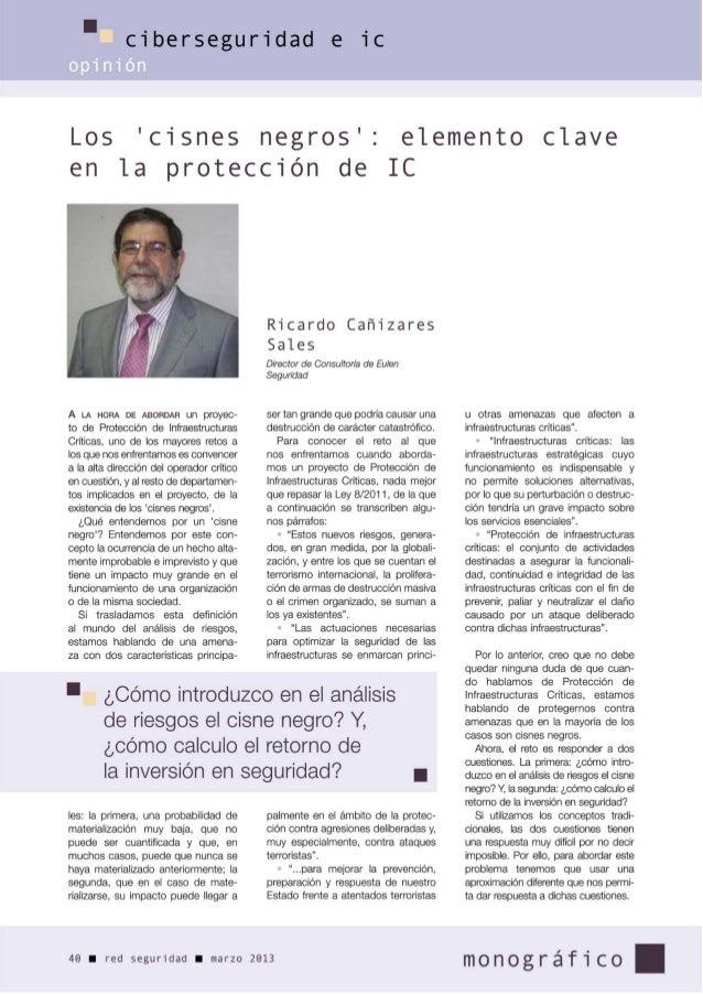 Cisnes Negros    - Elemento clave en la Protección de Infraestructuras Críticas - marzo 2013