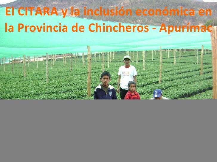 El CITARA y la inclusión económica en la Provincia de Chincheros - Apurímac