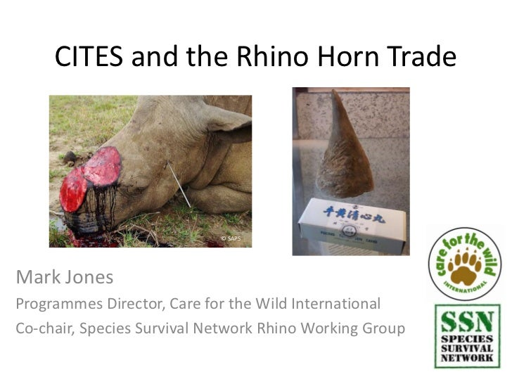 CITES and the Rhino Horn Trade                            © SAPSMark JonesProgrammes Director, Care for the Wild Internati...