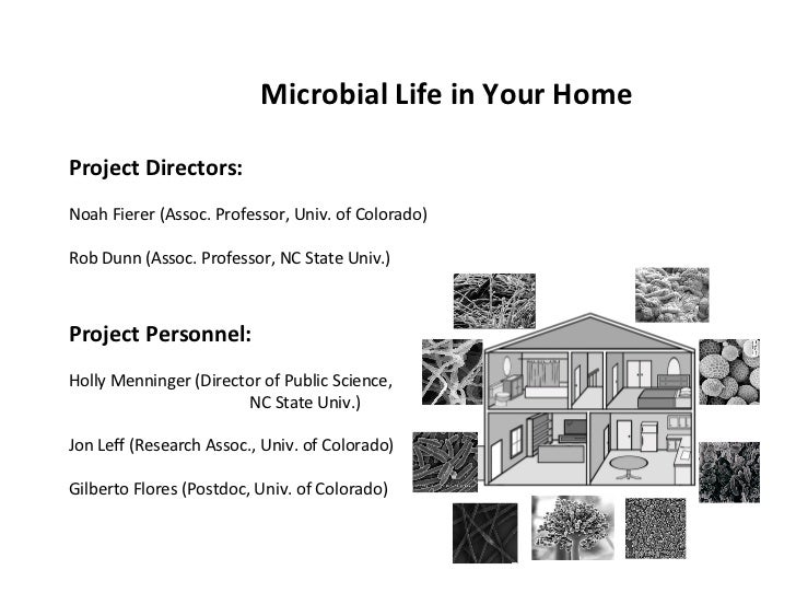 Microbial Life in Your Home  Project Directors:  Noah Fierer (Assoc. Professor, Univ. of Col...