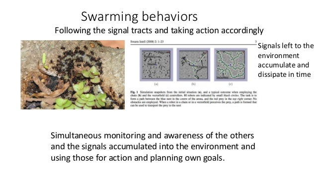 Swarming behaviors Following the signal tracts and taking action accordingly Simultaneous monitoring and awareness of the ...