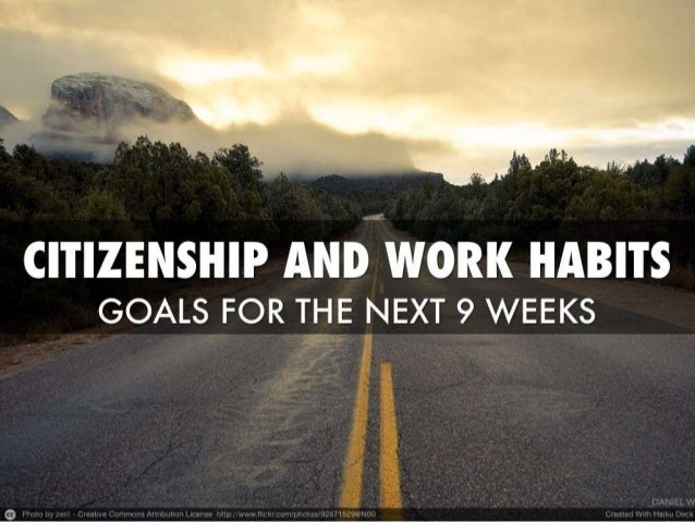 Citizenship and work habits