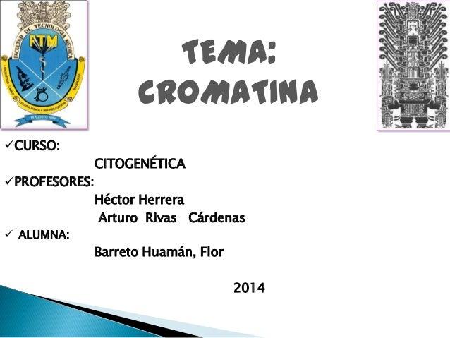 TEMA: CROMATINA CURSO: CITOGENÉTICA PROFESORES: Héctor Herrera Arturo Rivas Cárdenas  ALUMNA:  Barreto Huamán, Flor  20...