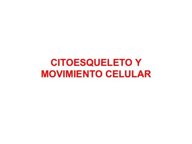 CITOESQUELETO Y MOVIMIENTO CELULAR