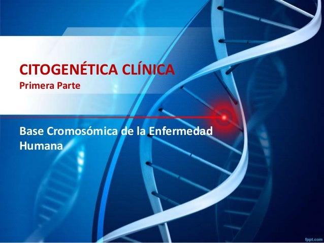 CITOGENÉTICA CLÍNICA Primera Parte  Base Cromosómica de la Enfermedad Humana