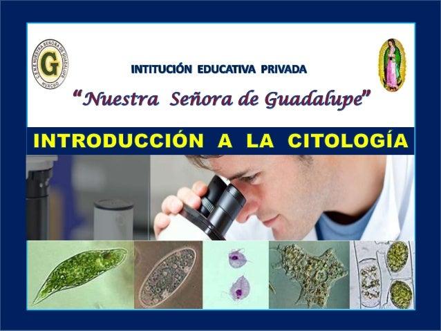 II - Unidad : El fascinante mundo de la Biología Área: Ciencia Tecnología y Ambiente Secundaria I.E.P «Nuestra Señora de G...